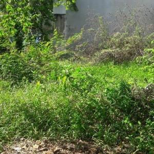 Bán đất 2 mặt tiền 121m2 gần cầu Bạch Yến - Hương Sơ. TP Huế
