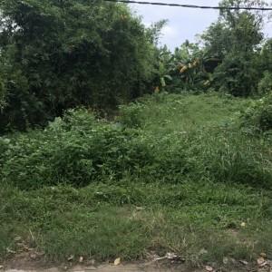 Bán đất thổ cư tại Xóm 10 Ngọc Anh đối diện Huế Star, huế Diện tích 145m2