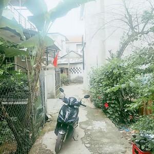 Nhà đất Huế - Bán đất giá rẻ tại kiệt 73 Nguyễn Hoàng,kim long. Huế DT 120m2
