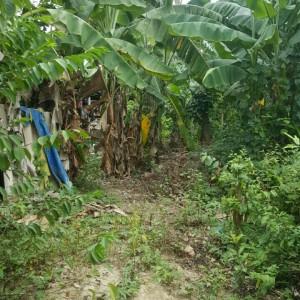 Nhà đất Huế - Bán đất giá rẻ tại Hương An, Huế DT 150m2