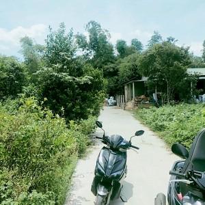 Bán đất giá rẻ tại Tam Thai. An Tây. Huế DT 100m2