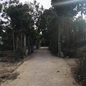 Bán đất 2 mặt tiền kiệt 57 Nguyễn Hoàng 114m2, Hương Long. Huế