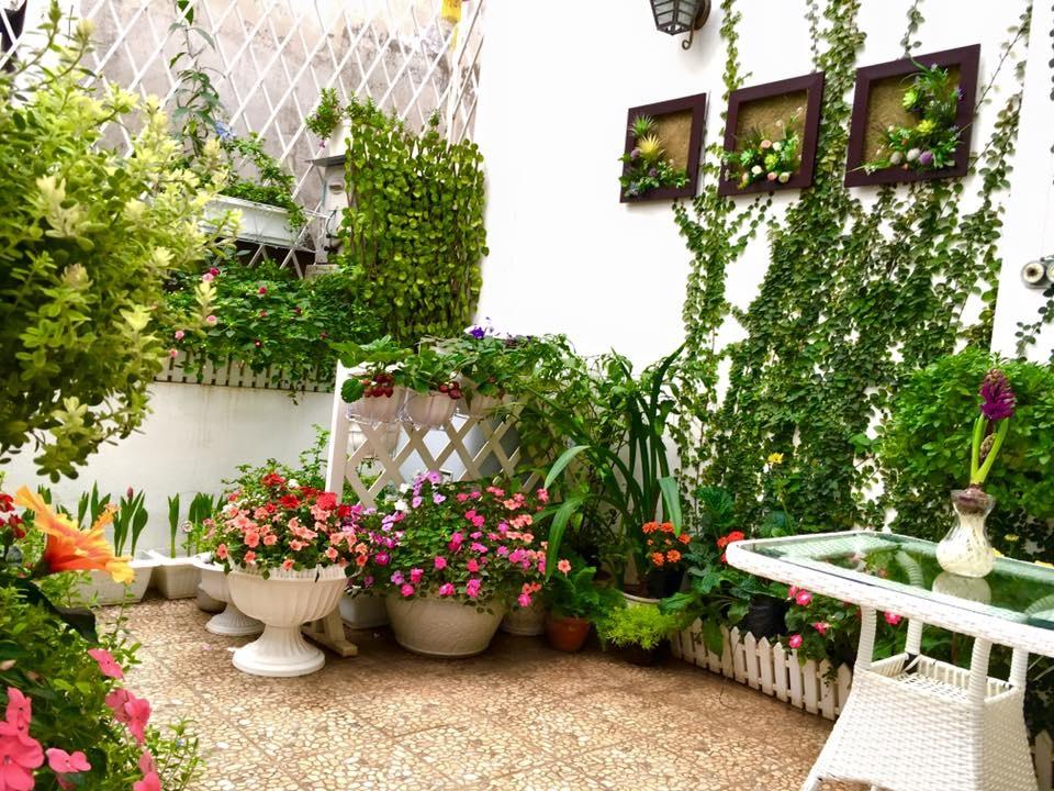 Vườn hoa 15m2 đẹp như cổ tích của mẹ Việt khiến bạn phải tròn mắt ngưỡng mộ